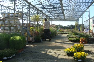 Purchasing plants for gardeners and garden centers